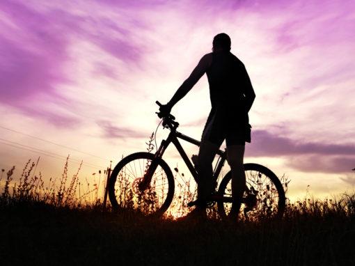 rower crossowy ranking