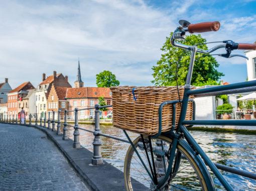 rowery merida opinie